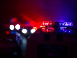 Polis detenshon