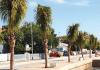 Palma nobo pa Promenade